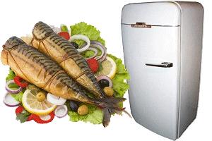 Коптильня из холодильника своими руками: вариант изготовления и полезные советы