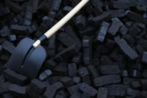 A shovel is placed over coal briquettes during a protest in front of the chancellery in Berlin