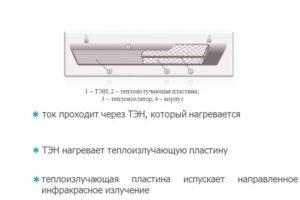 Устройство ИК-обогревателя. (Для увеличения нажмите)