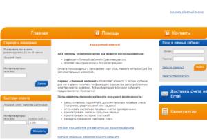 Пример страницы сайта энергосбытовой компании. (Для увеличения нажмите)